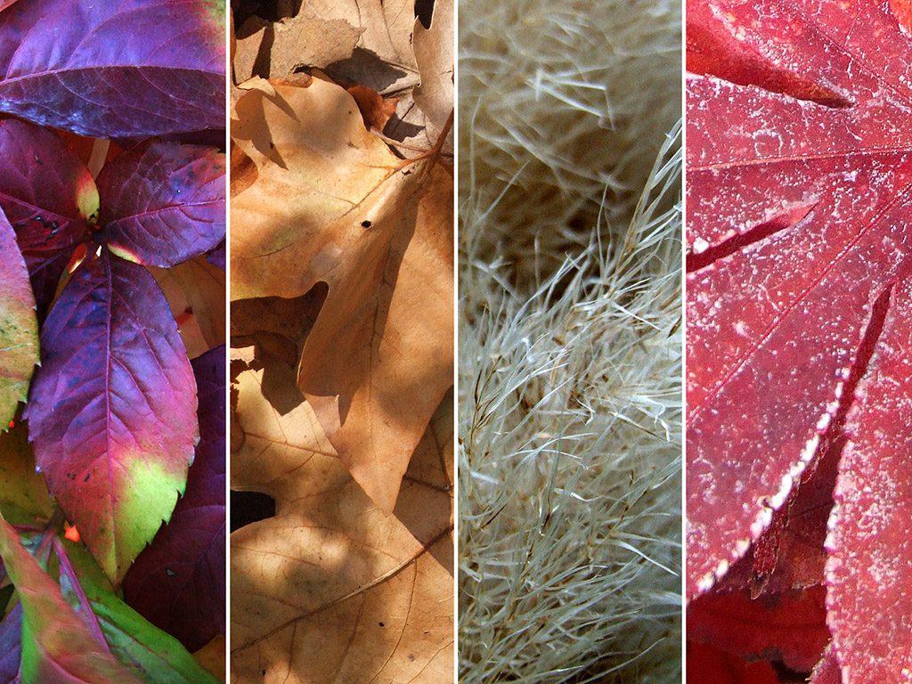 Bőrápolás őszi üzemmódban